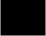 Haidar Karoum Logo